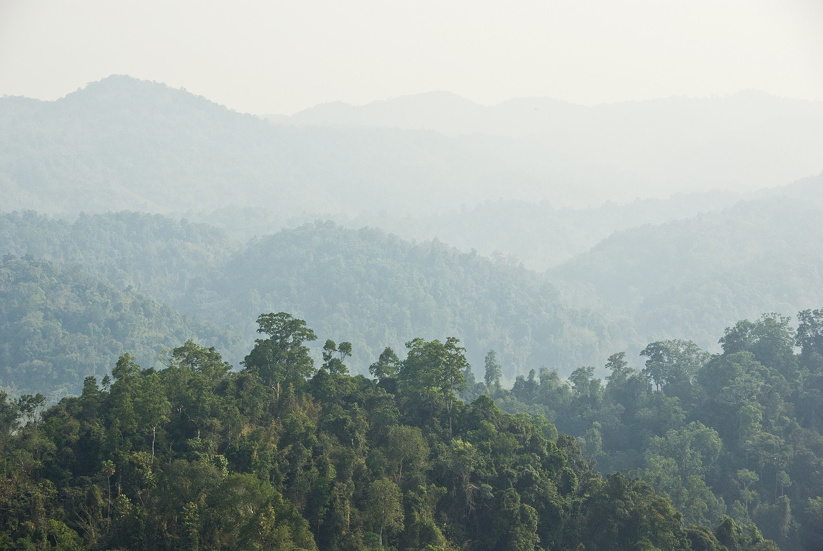 Jungle covered mountains of Laos - Lost With Purpose