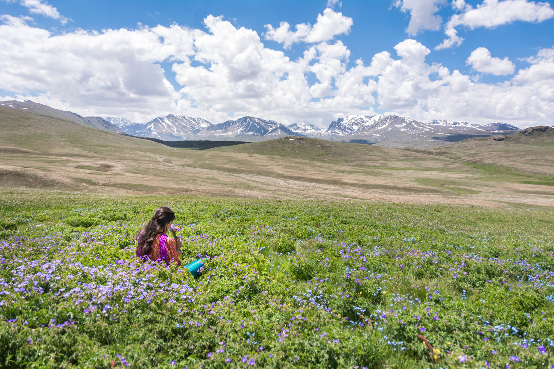A girl sitting in the flower fields of Deosai National Park, Pakistan
