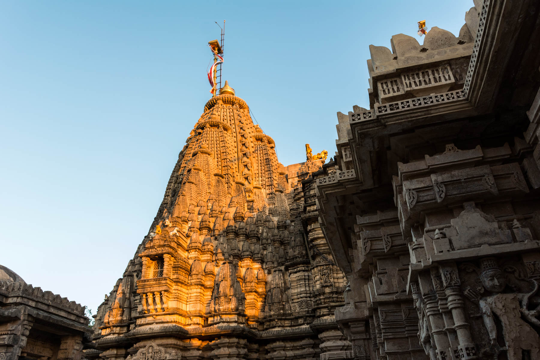 Jain pilgrimage in Palitana, India - Sunrise on the Adinath temple in Palitana - Lost With Purpose