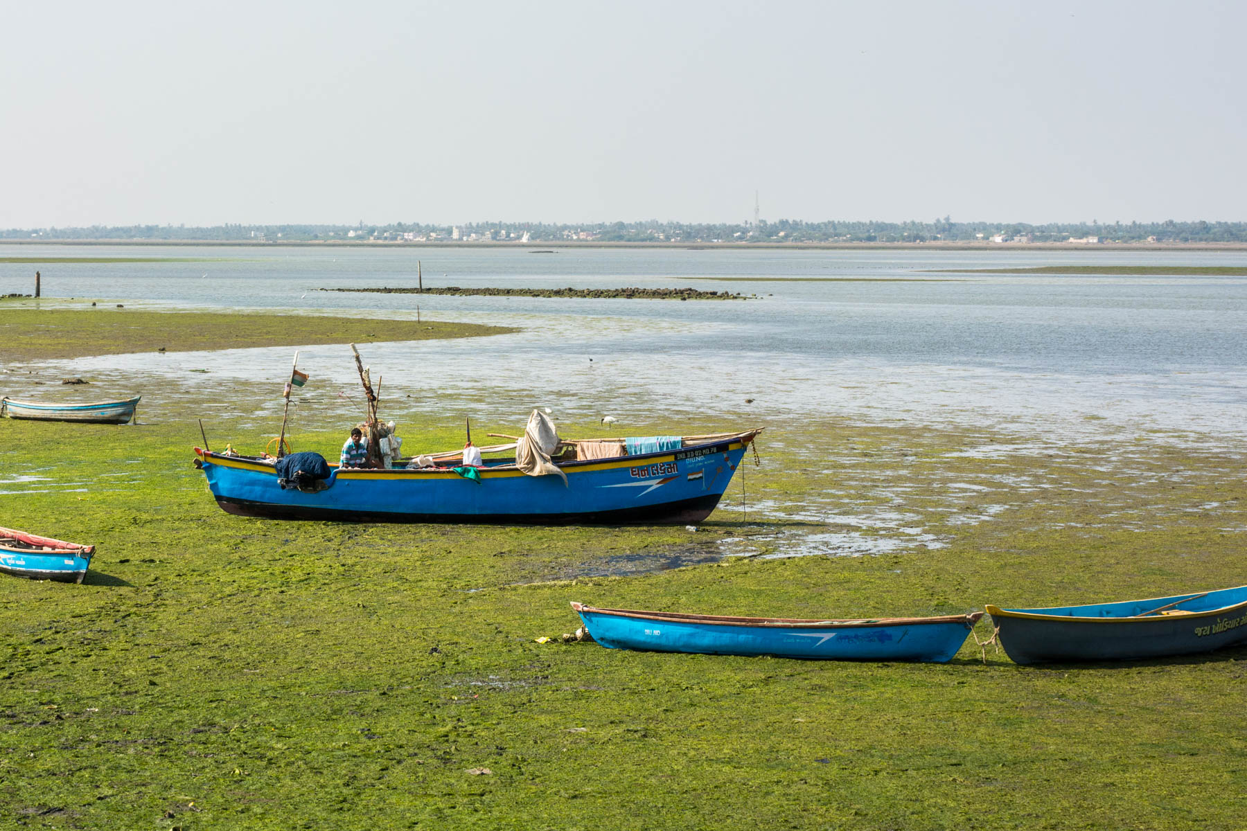 How to get from Palitana to Diu by bus - A man looking lost in a boat amongst the greens near Diu, Gujarat, India - Lost With Purpose