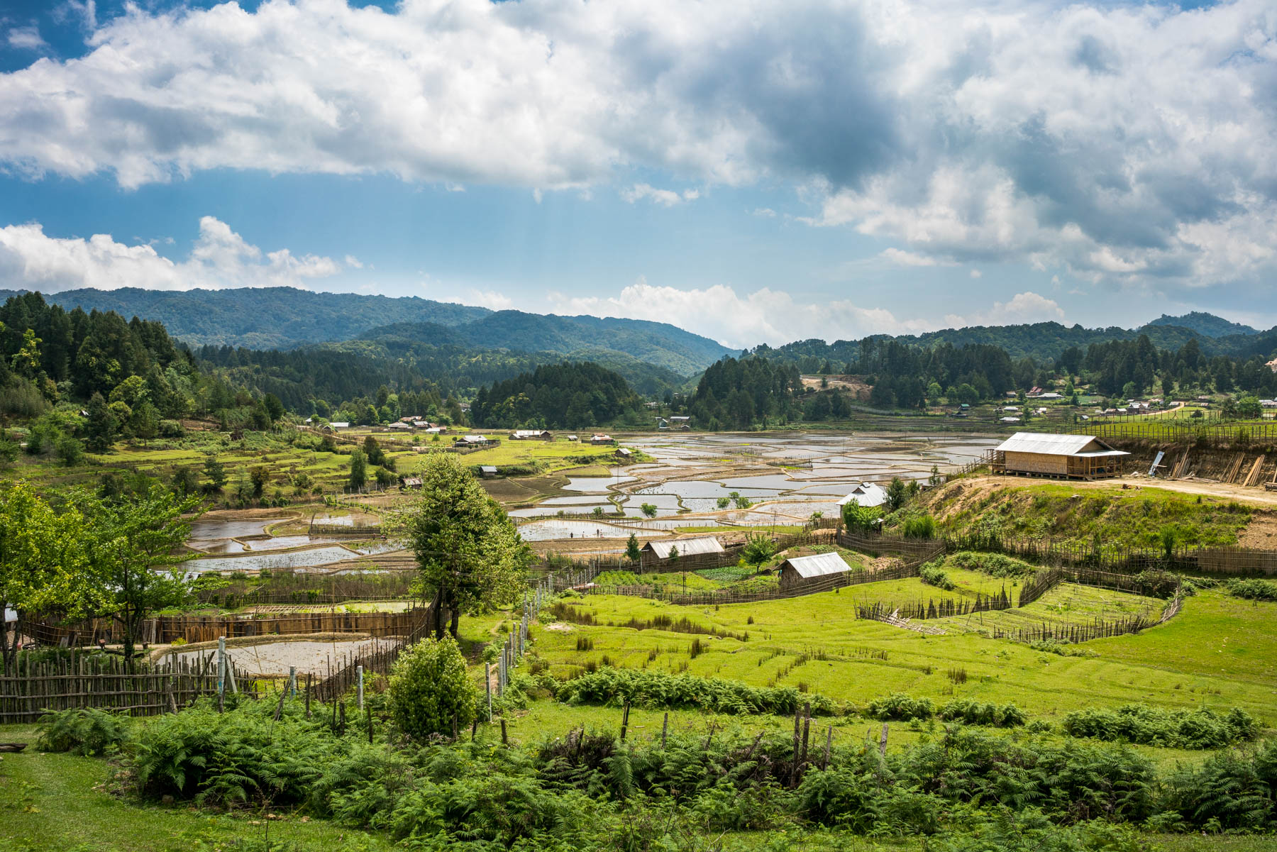 Backpacking Arunachal Pradesh travel guide - The picturesque Ziro Valley - Lost With Purpose