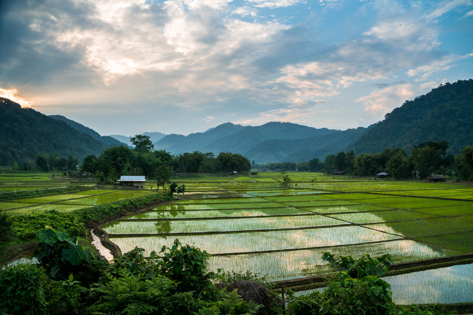 Backpacking Arunachal Pradesh travel guide - Sunset over rice paddies in Along (Aalo) - Lost With Purpose