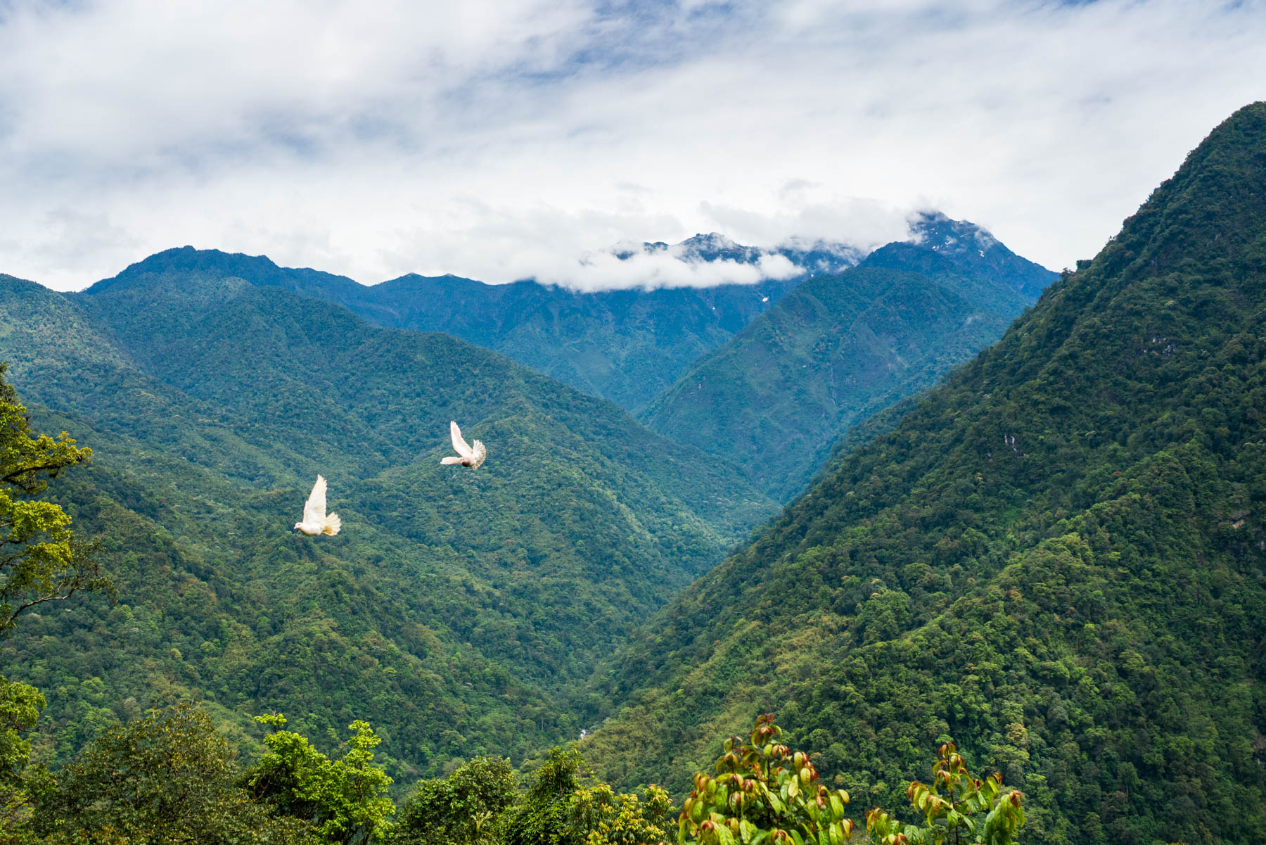 Backpacking in Arunachal Pradesh - The view on the way to Mechuka - Lost With Purpose