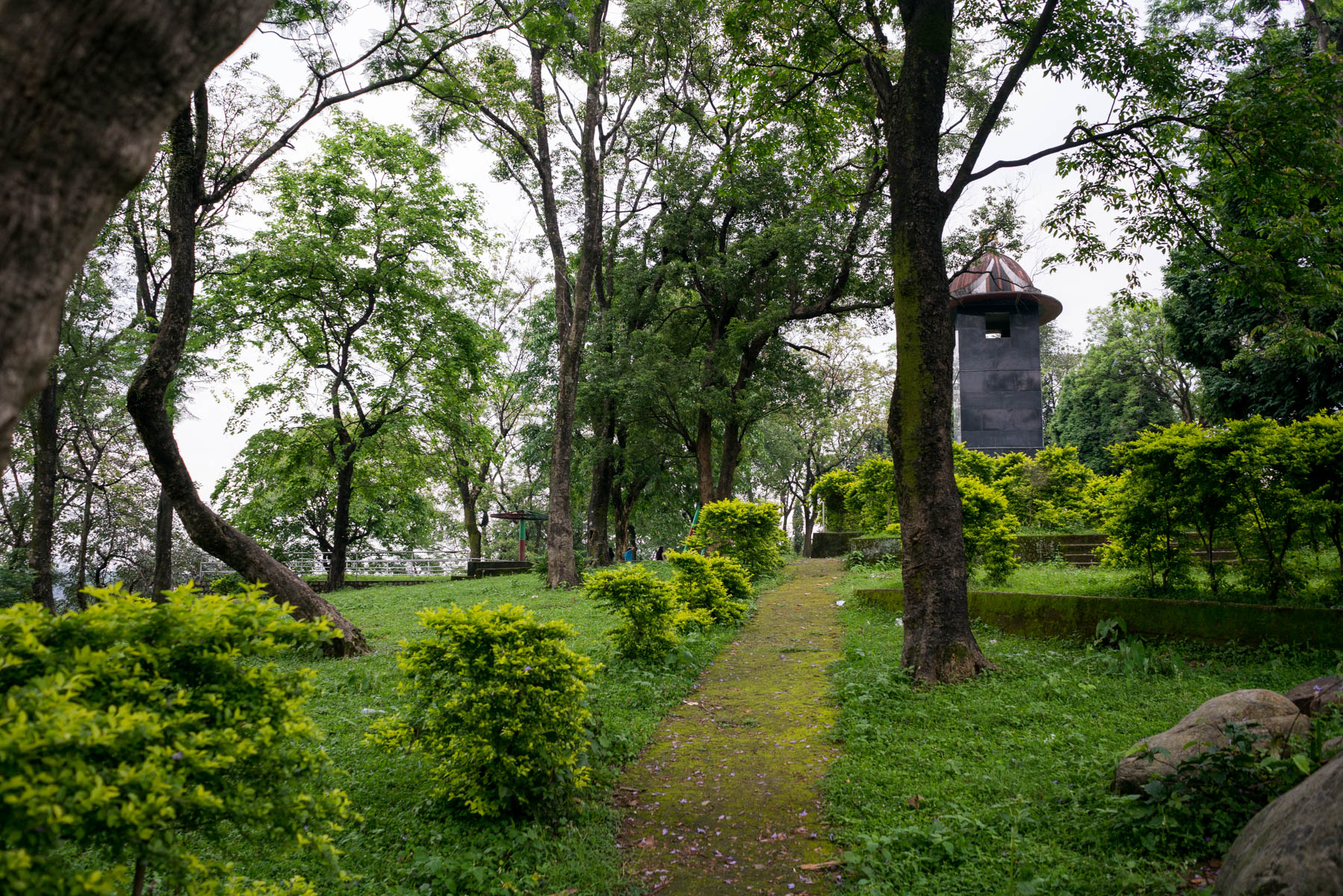 Backpacking in Arunachal Pradesh travel guide - Park in Pasighat - Lost With Purpose
