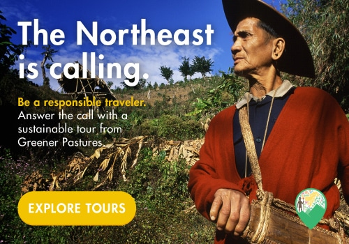 Interested in a tour to Northeast India? Join a sustainable tour with Greener Pastures!