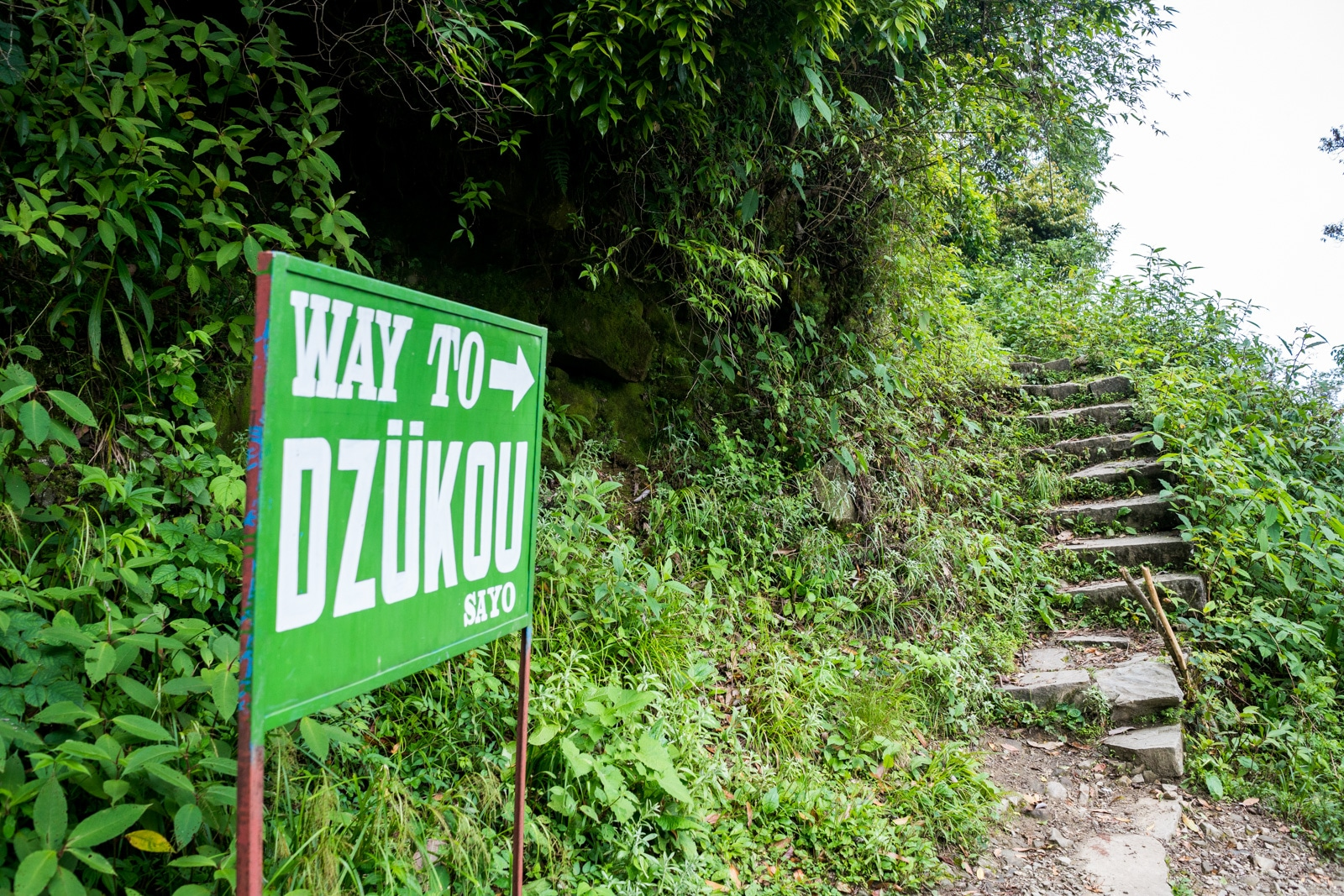 How to get to Dzukou Valley from Nagaland, India - Sign marking the start of the Viswema approach to Dzukou Valley - Lost With Purpose
