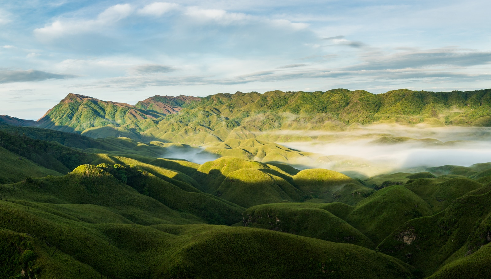 How to get to Dzukou Valley from Nagaland, India - Sunrise over Dzukou Valley on a foggy morning - Lost With Purpose