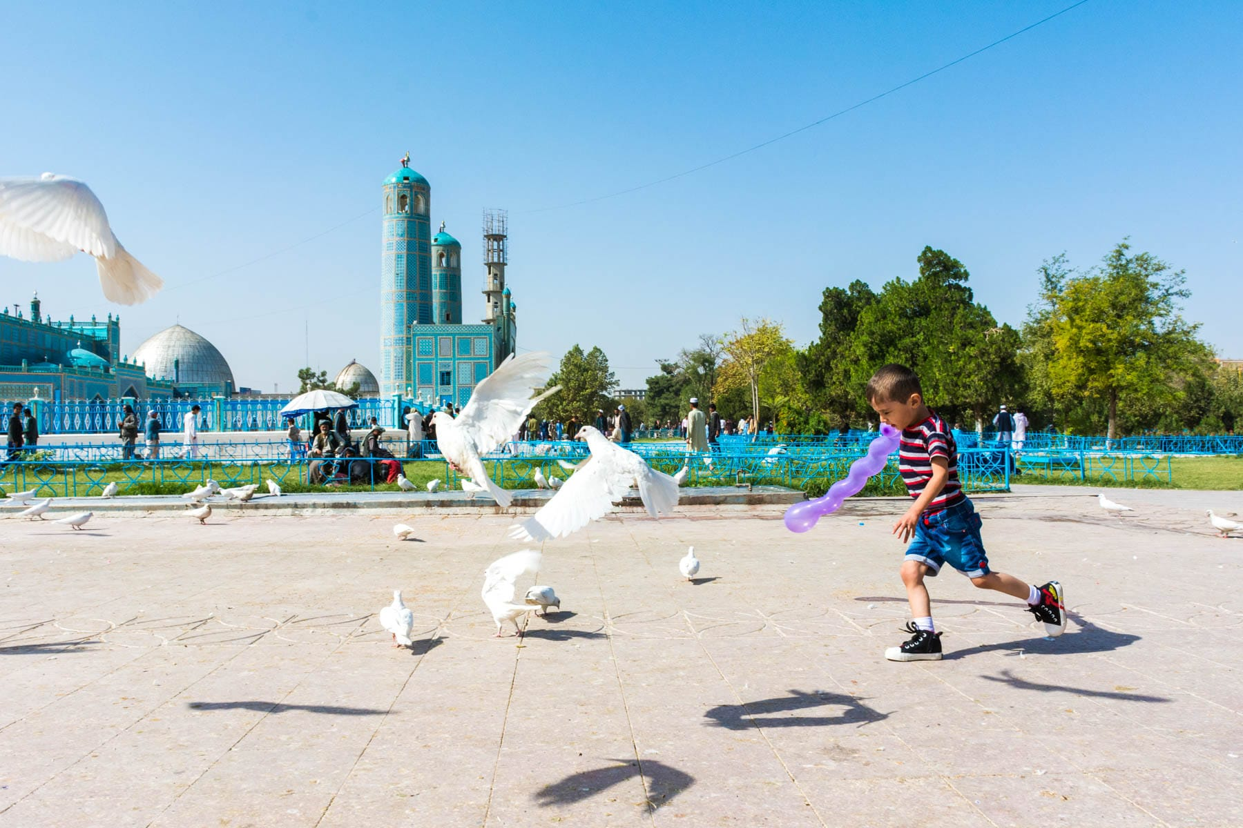 Photos of Mazar-i-Sharif, Afghanistan - A boy chasing white pigeons - Lost With Purpose