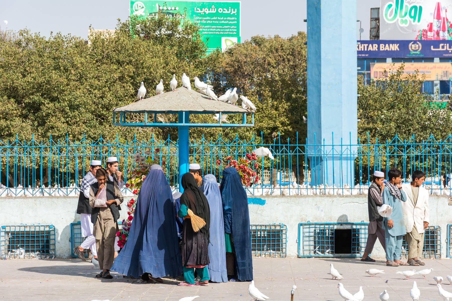 Photos of Mazar-i-Sharif, Afghanistan - Boys and women clustering to feed the white pigeons around the Blue Mosque in Mazar - Lost With Purpose