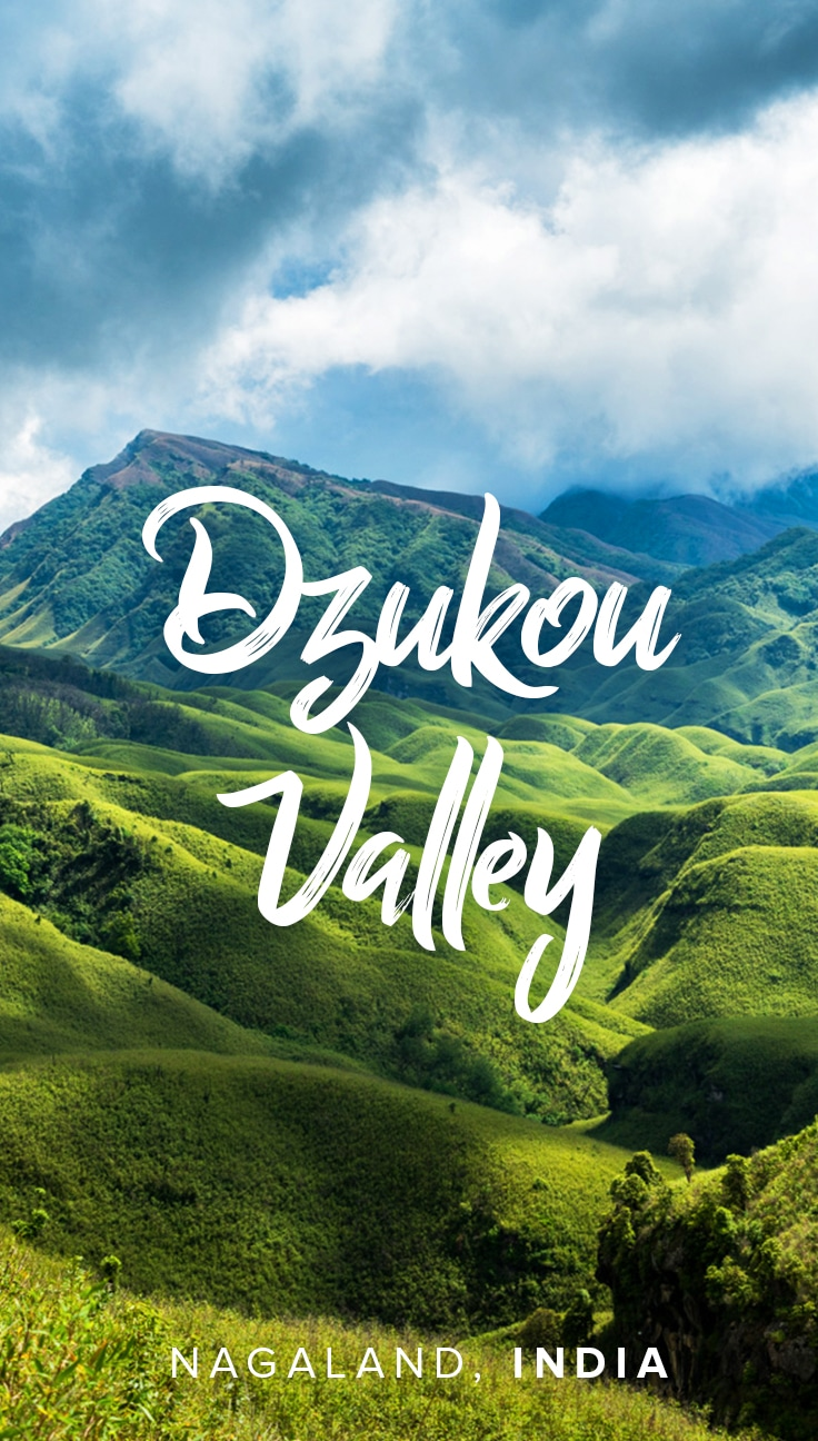 Everything you need to know about Dzukou Valley - Lost With Purpose