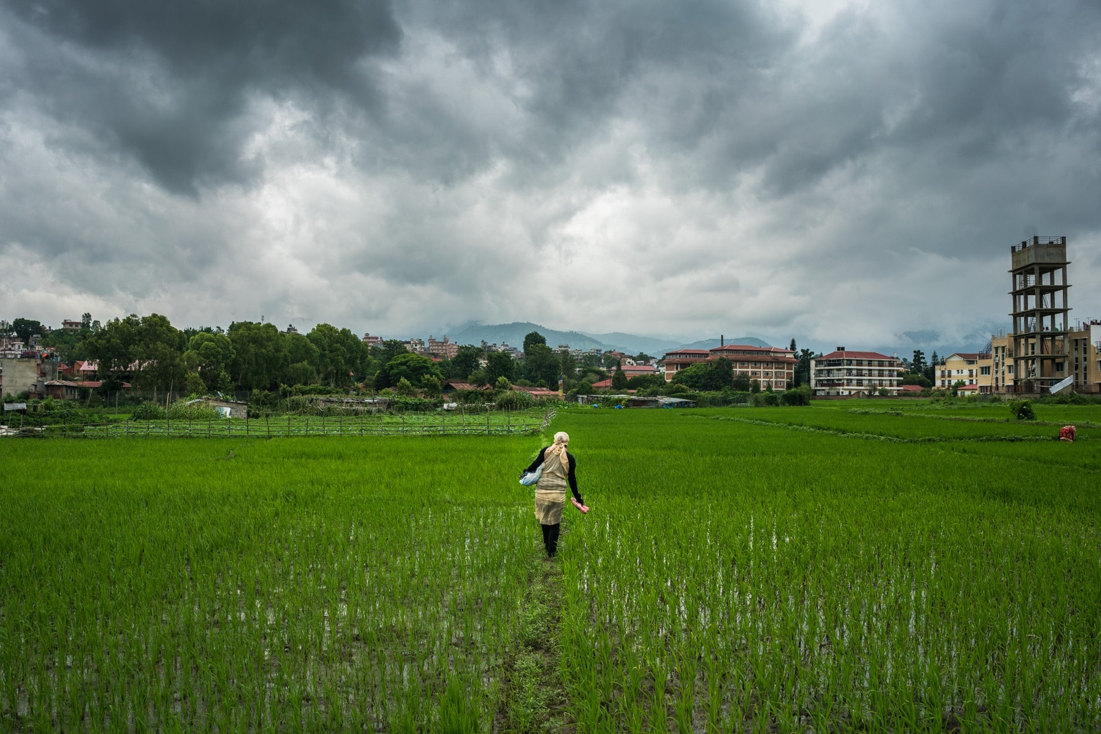 Scenes from Patan, Nepal - Sarita walking through rice fields inside Patan city - Lost With Purpose travel blog