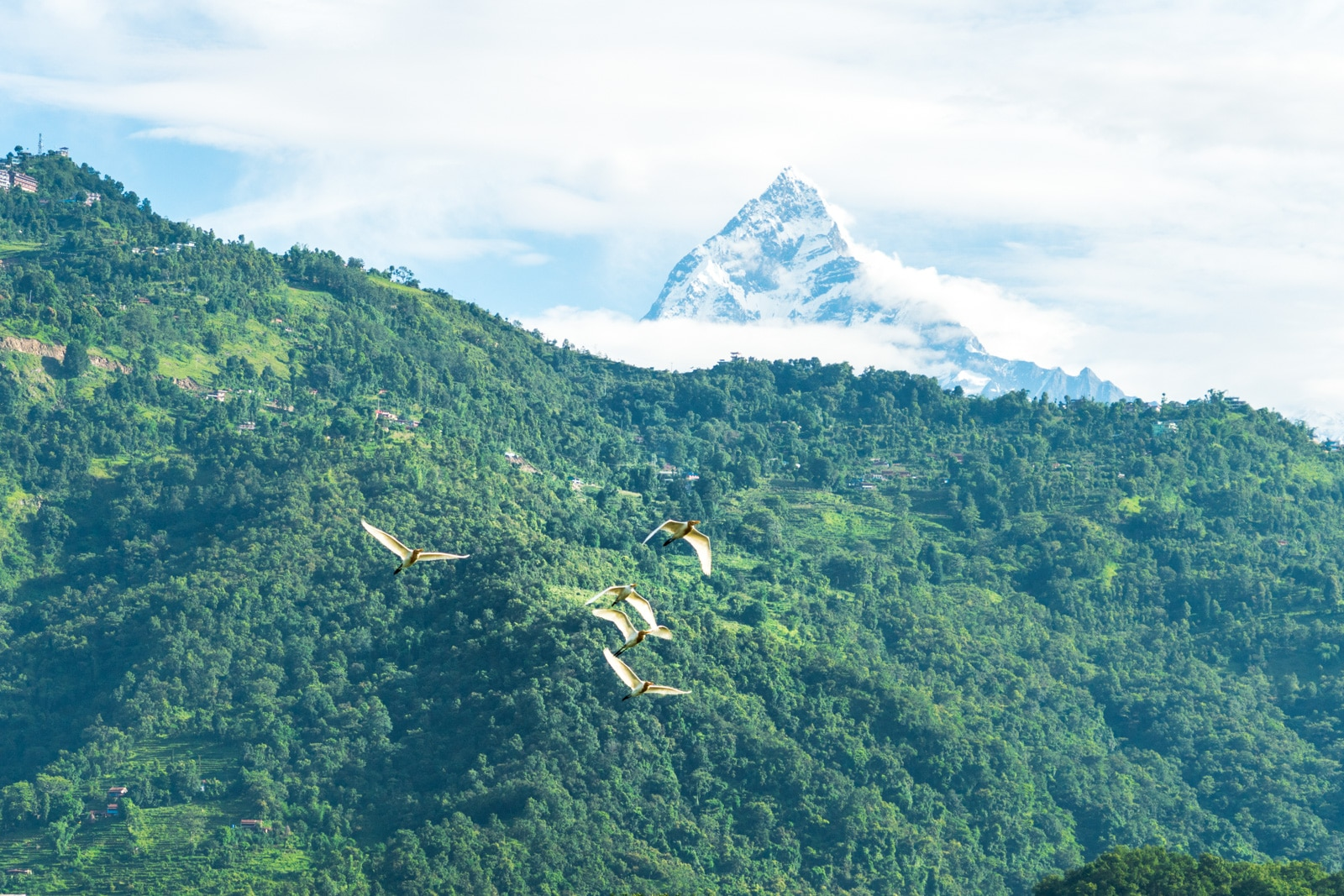 Travel during monsoon in Nepal - A cloudy view of the Annapurna mountain range from Pokhara - Lost With Purpose travel blog