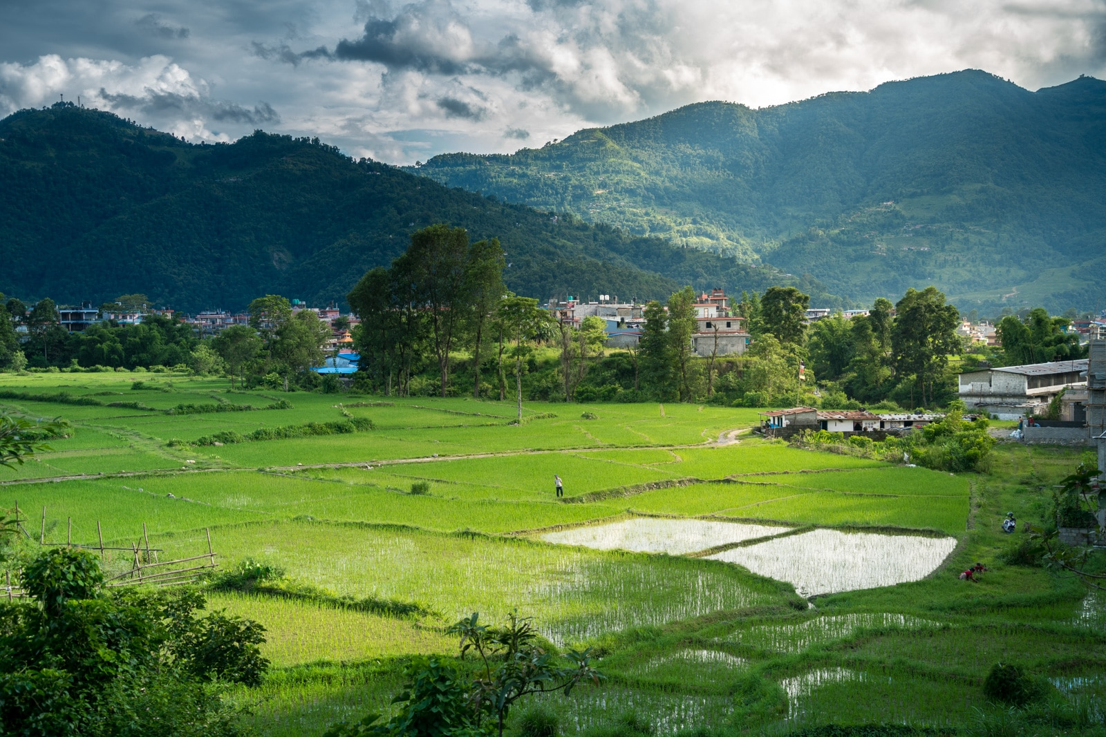 What's it like to travel during monsoon in Nepal? - Rice paddies around Pokhara - Lost With Purpose travel blog
