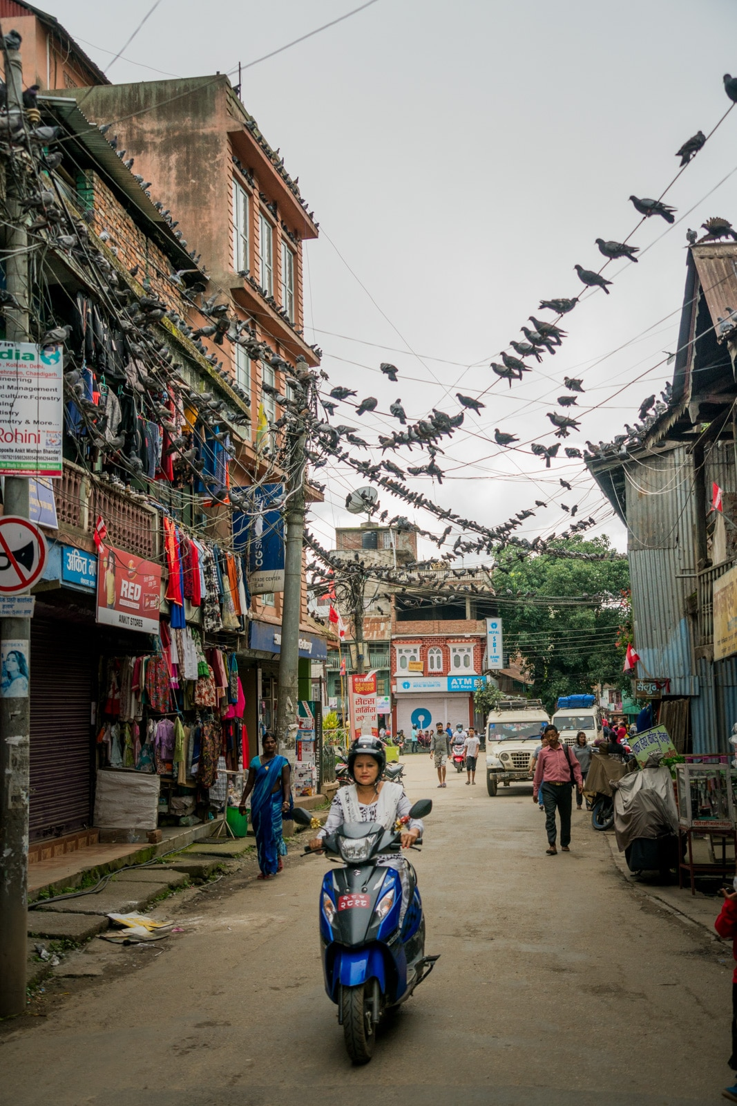 Pigeons, pedestrians, and passers by on the streets of Ilam, an off the beaten track town in East Nepal famous for its teas.