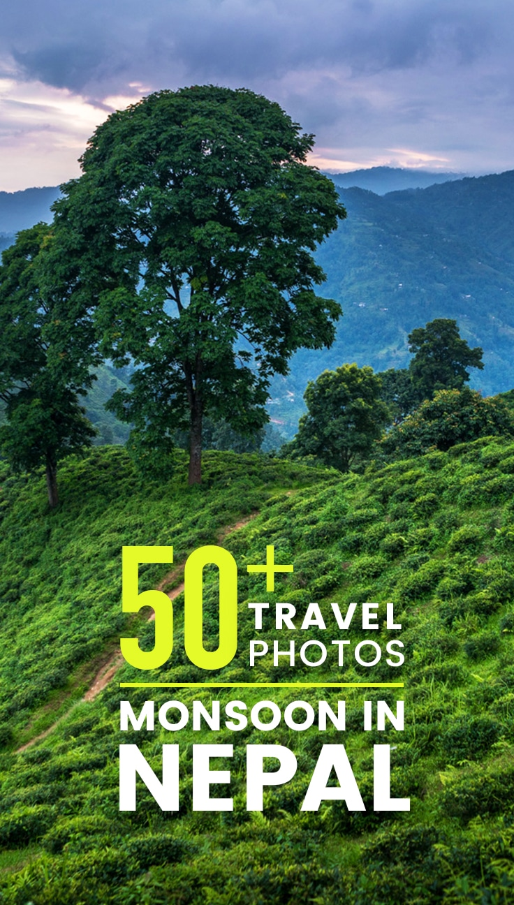 Thinking of traveling to Nepal in monsoon? Monsoon in Nepal lasts from June to September, and can make for some difficult traveling. Here are 50+ photos to give you a taste of monsoon travel in Nepal, plus monsoon season photography tips and resources for trekking during monsoon.