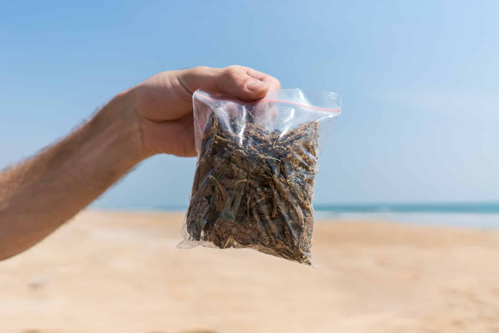 Guide to cannabis in India - 100 grams of weed in a bag on the beach in Puri, Odisha - Lost With Purpose travel blog