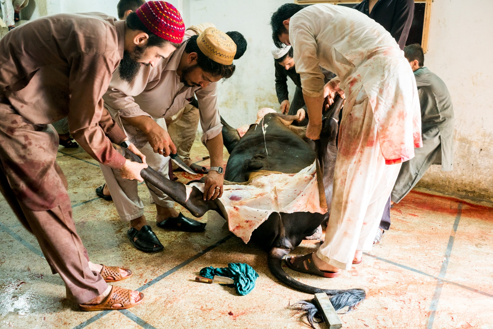 Celebrating Eid al-Adha in Lahore, Pakistan - Skinning a cow - Lost With Purpose travel blog
