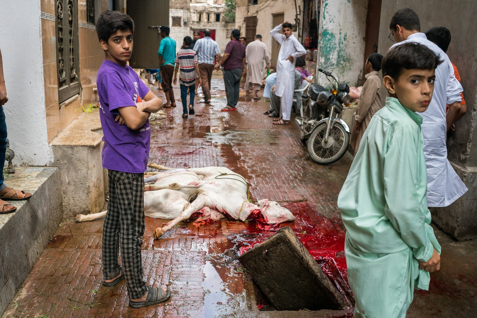 Celebrating Eid al-Adha in Lahore, Pakistan - Dead goats lying on the streets - Lost With Purpose travel blog