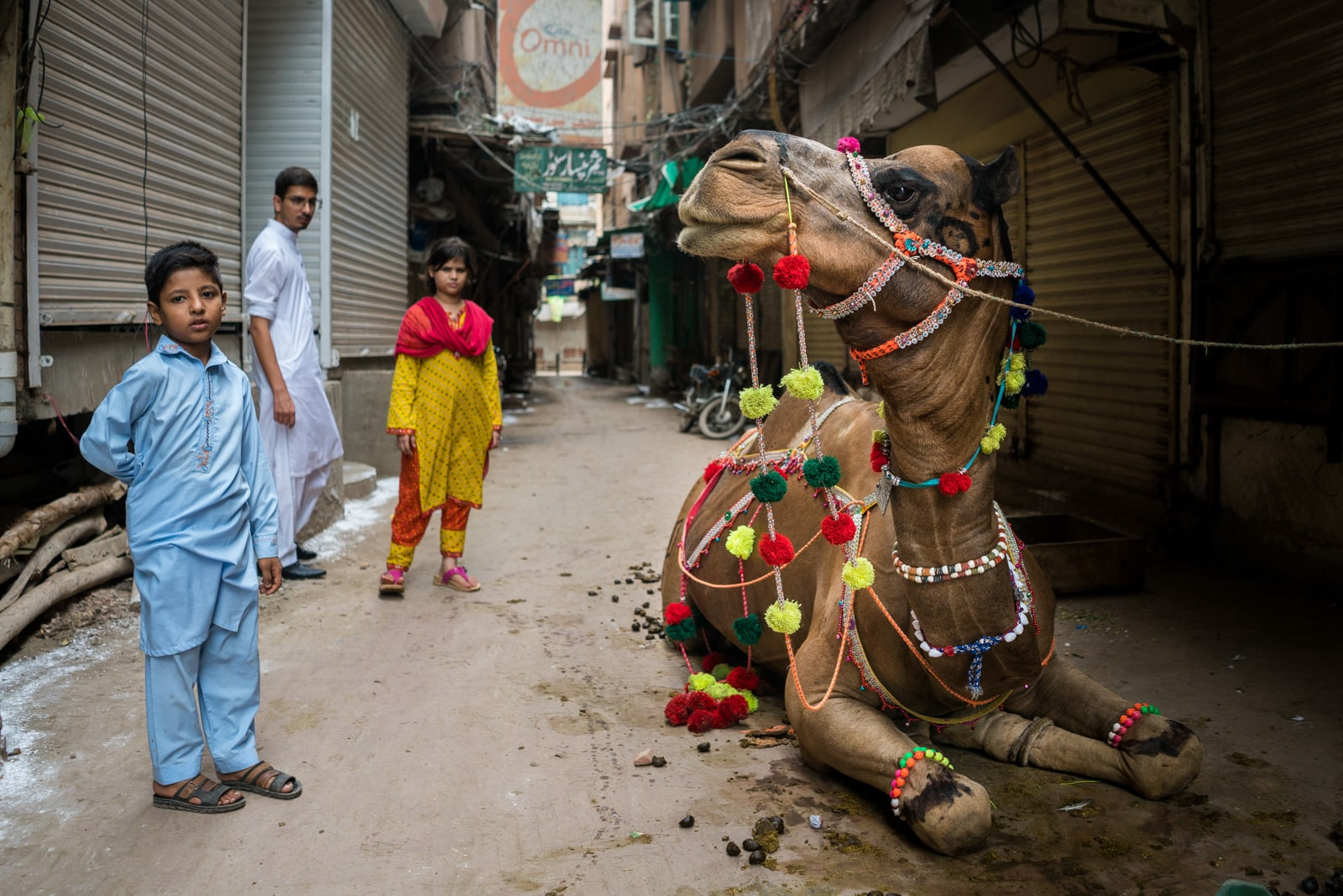 Celebrating Eid al-Adha in Lahore, Pakistan - Street kids and a camel - Lost WIth Purpose travel blog