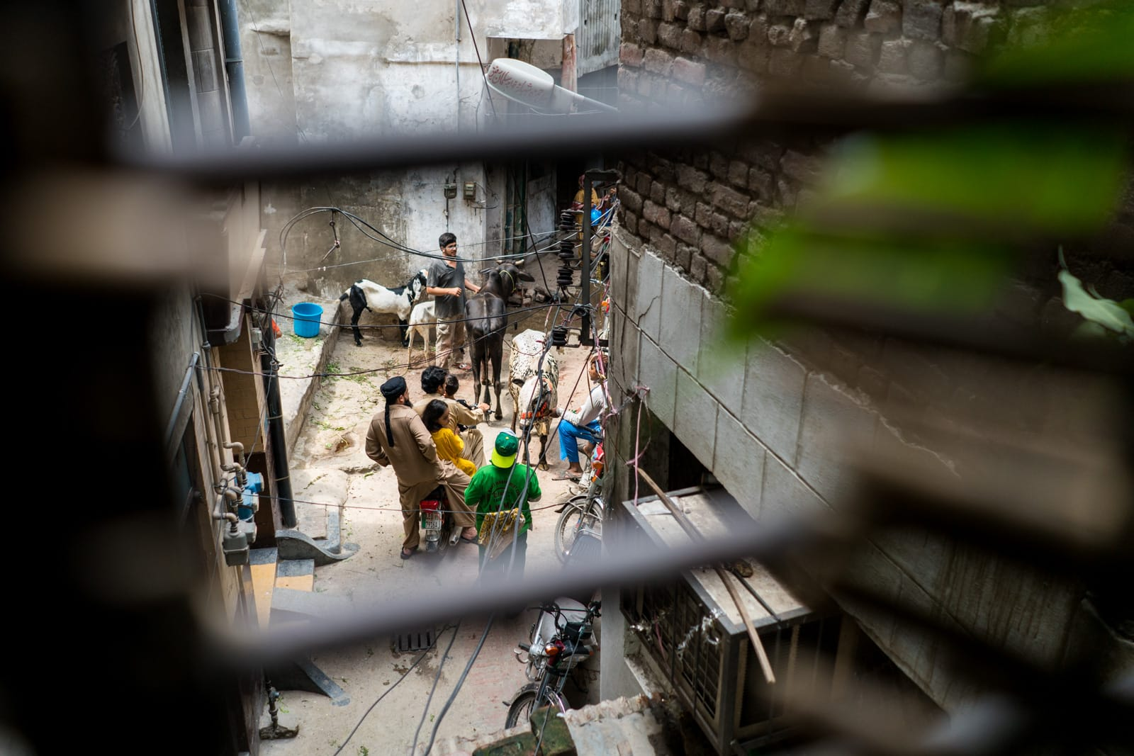 Celebrating Eid al-Adha in Lahore, Pakistan - Looking down on the streets from a haveli - Lost With Purpose travel blog