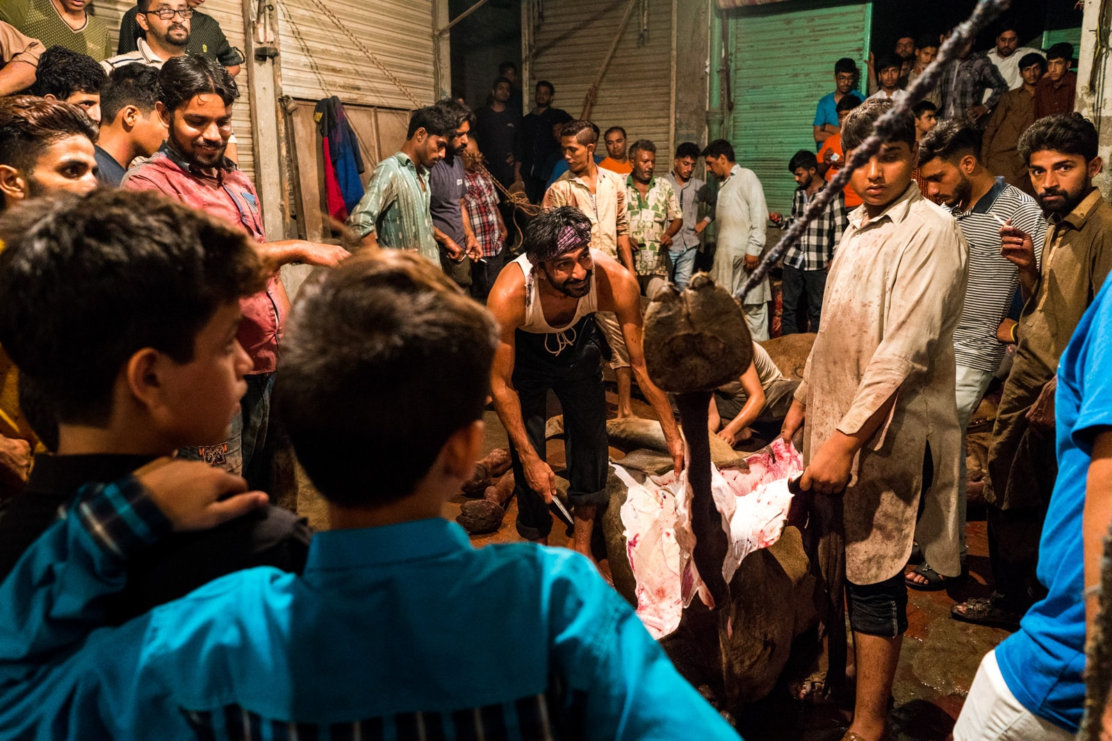 Celebrating Eid al-Adha in Lahore, Pakistan - Boys watching a camel being skinned - Lost With Purpose travel blog