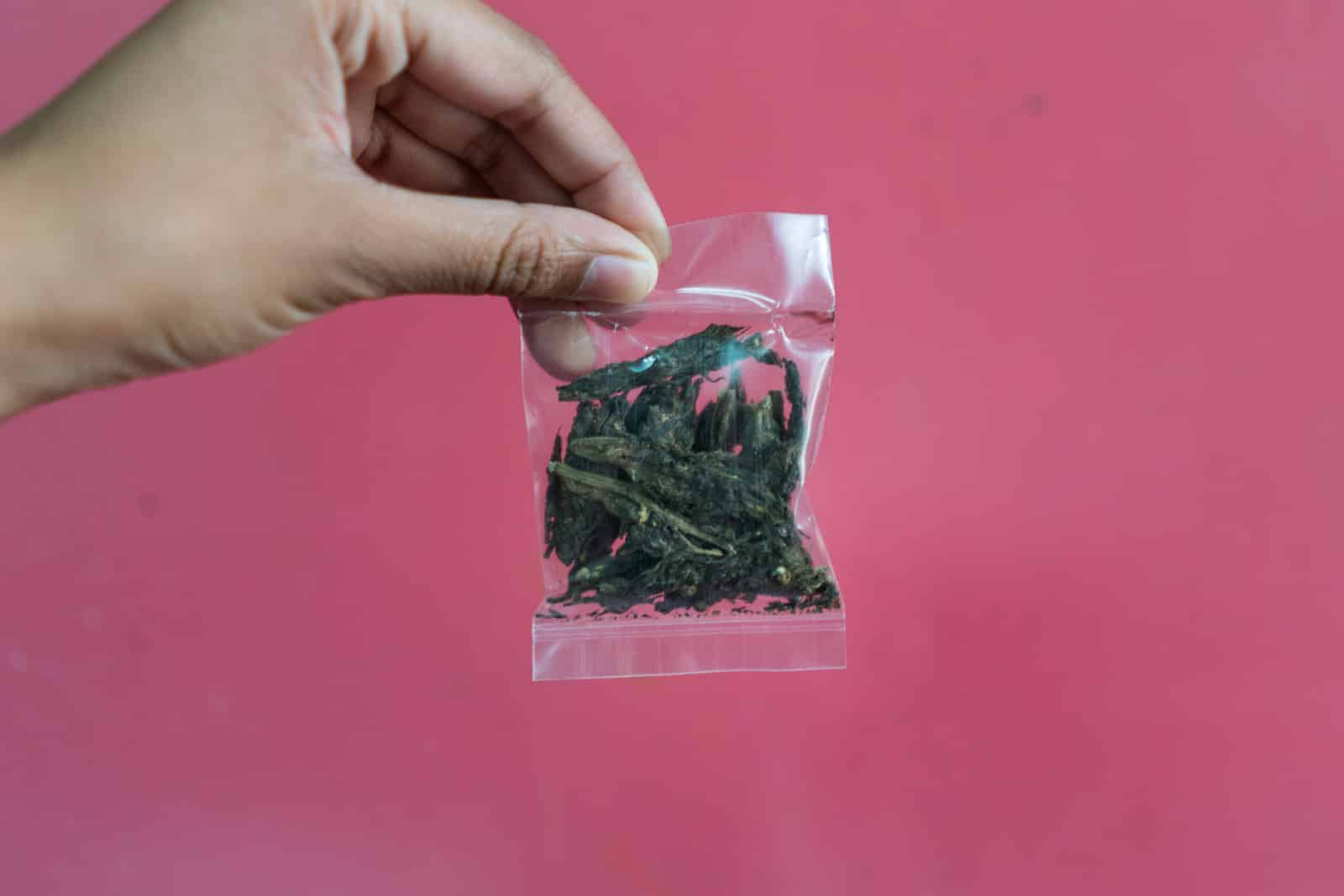 Guide to cannabis in India - Small packet of weed from Kolkata - Lost With Purpose travel blog