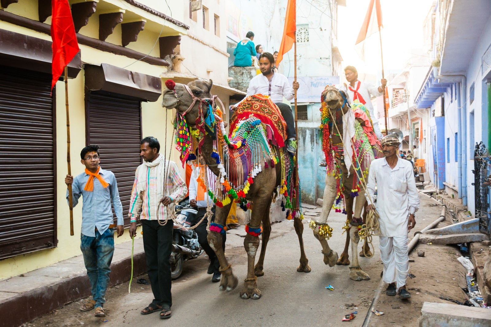 Why we love India - Camels during a parade for Shiva's birthday in Bundi, Rajasthan state, India - Lost With Purpose travel blog