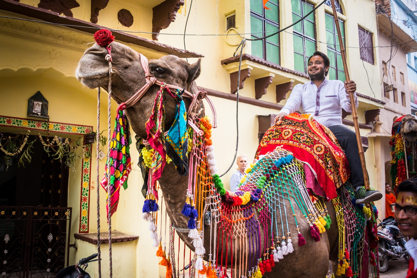 Falling in love with India - Colorful camels on the streets of Rajasthan - Lost With Purpose travel blog
