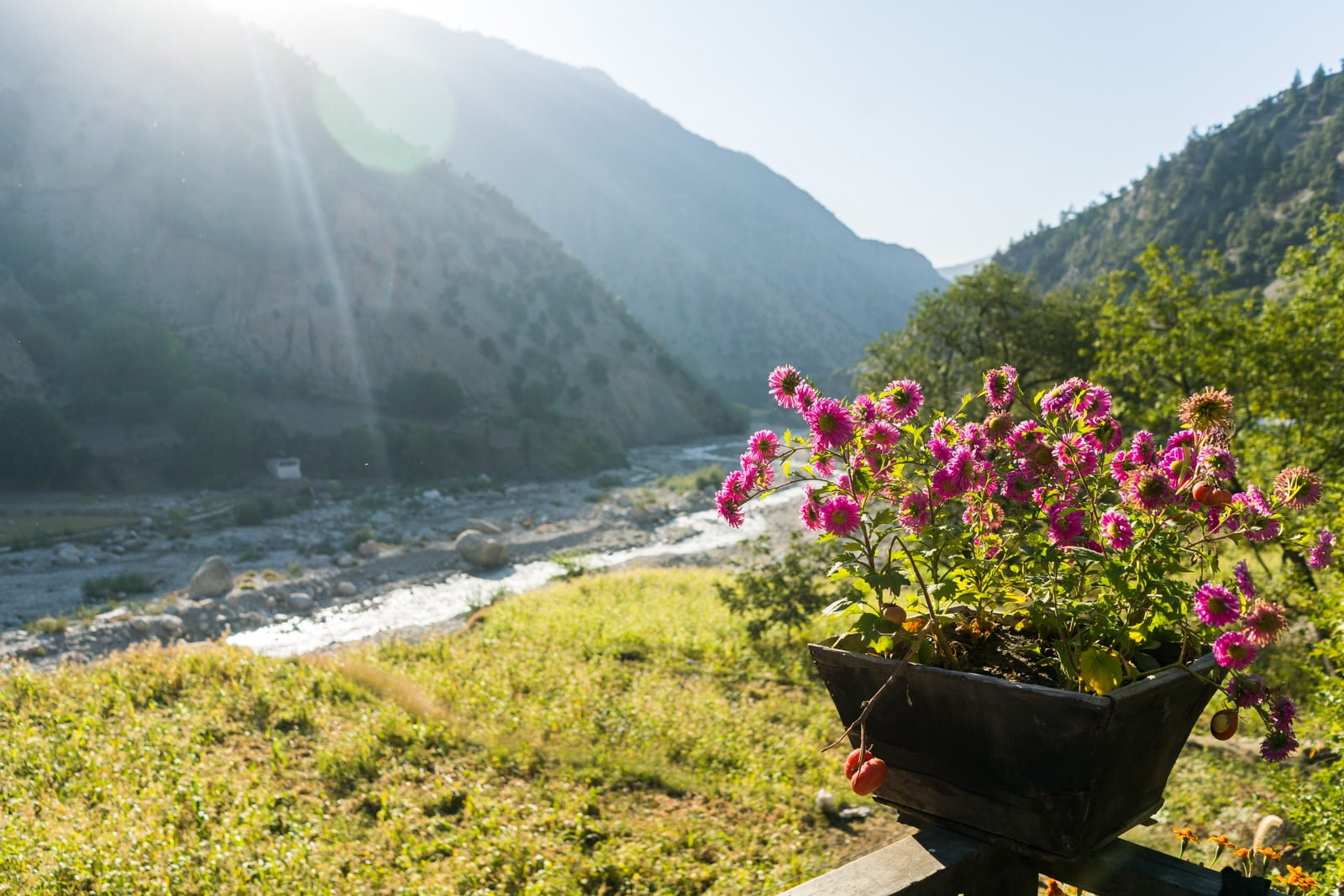 How to get from Chitral to the Kalash Valleys in Pakistan - Flowers and views of Rumboor Valley - Lost WIth Purpose travel blog