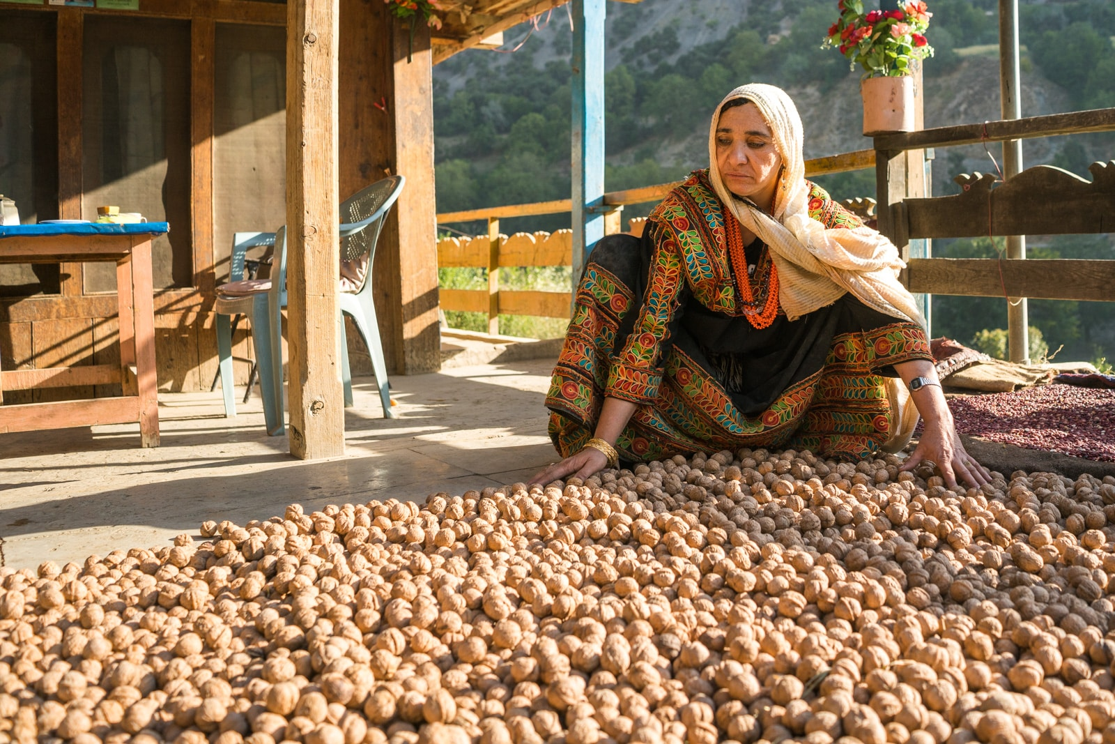 Kalasha woman drying out walnuts to store for winter