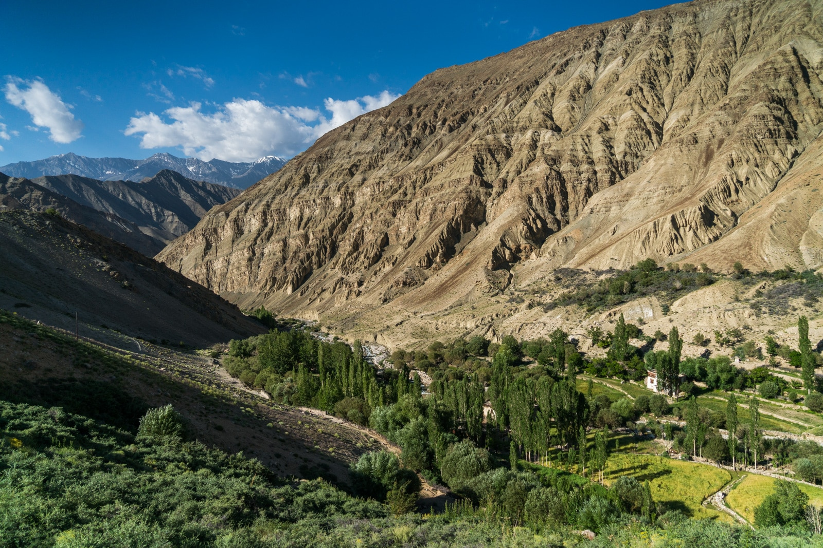 Short 3-day itinerary and guide to the Sham Valley trek in Ladakh, India - View while trekking out of Yangthang village - Lost With Purpose travel blog