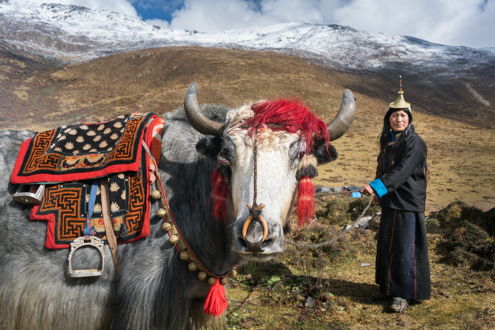 Photos of the 2017 Royal Highlander Festival in Bhutan - Local Layap lady with a yak with a saddle - Lost With Purpose travel blog