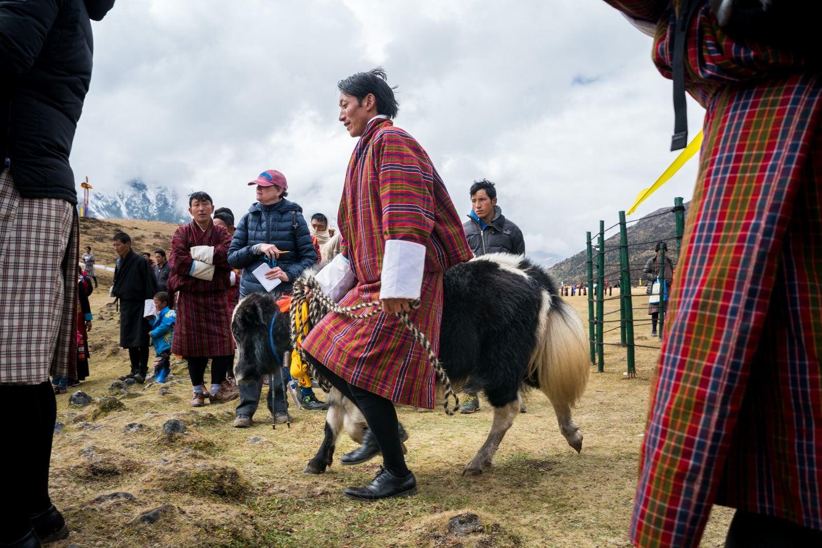 Photos of the 2017 Royal Highlander Festival in Bhutan - Man showing a baby yak at the festival - Lost With Purpose travel blog