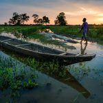 A man and fishing boat during sunset on Majuli river island in Assam, India - Lost With Purpose travel blog