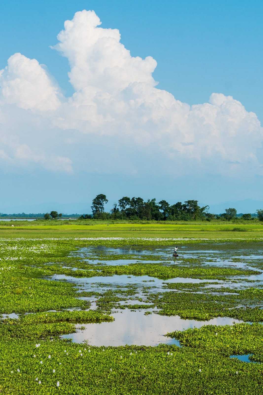 Majuli island is an idyllic river island in Assam state, Northeast India. If you're looking for a place to relax in India, Majuli island is the perfect off the beaten track destination.