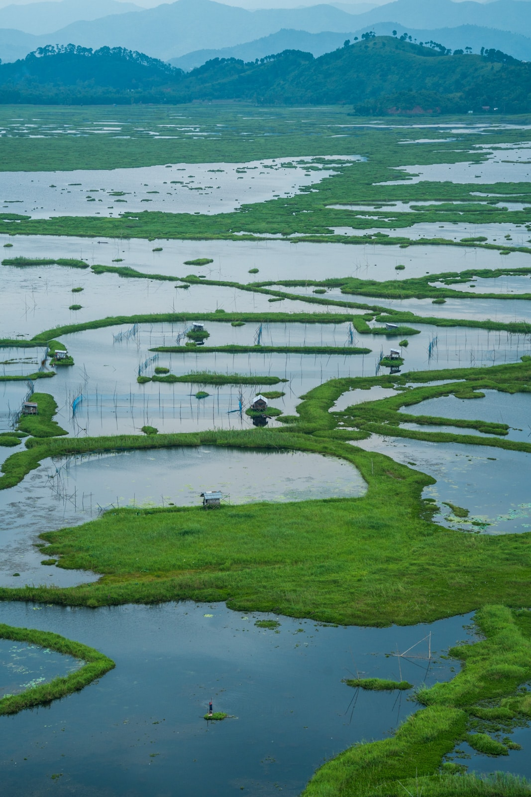 Floating islands of phumdis on Loktak Lake, an off the beaten track destination in Manipur state, Northeast India.