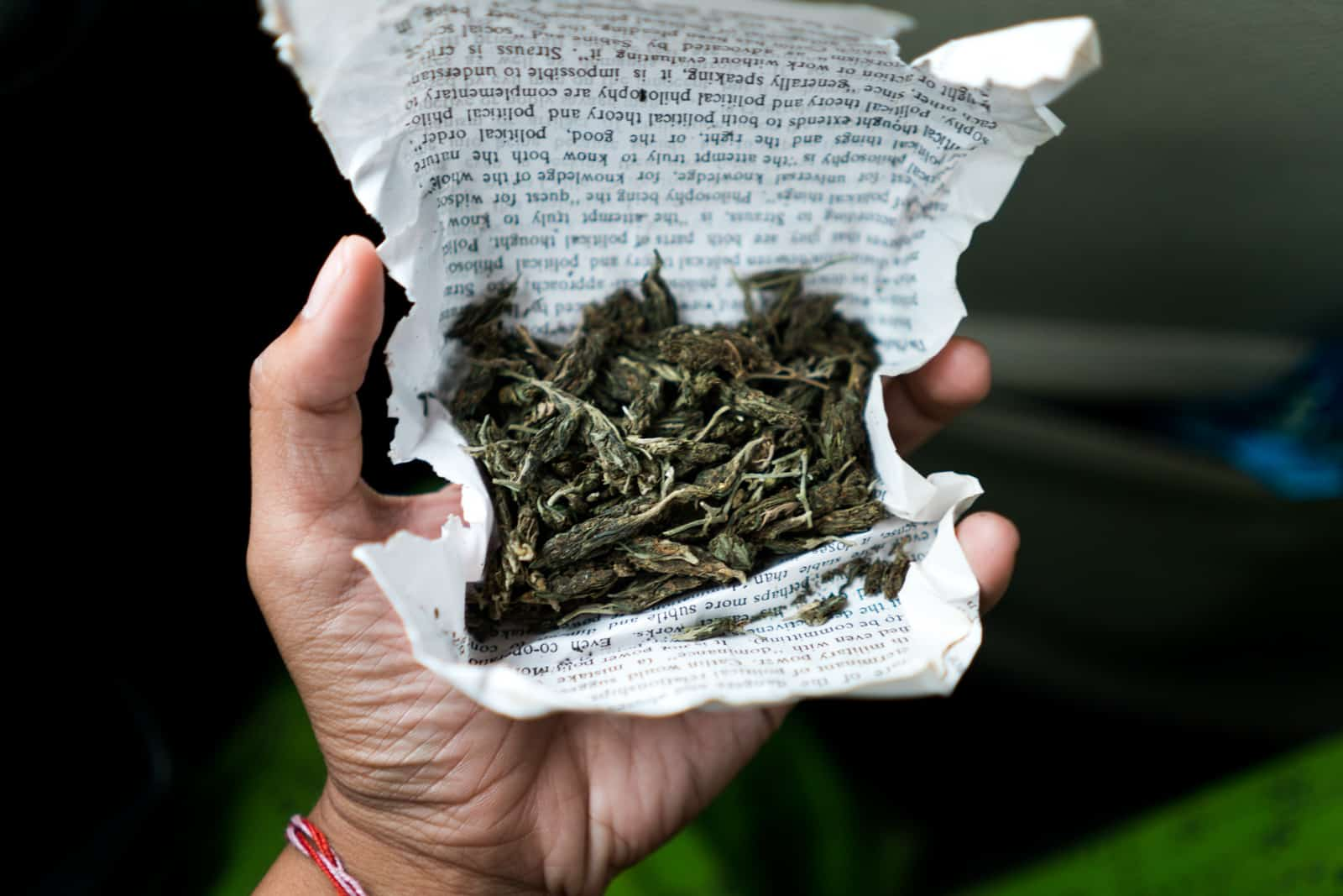 Guide to smoking weed in India - Good weed in Imphal, Manipur - Lost With Purpose travel blog