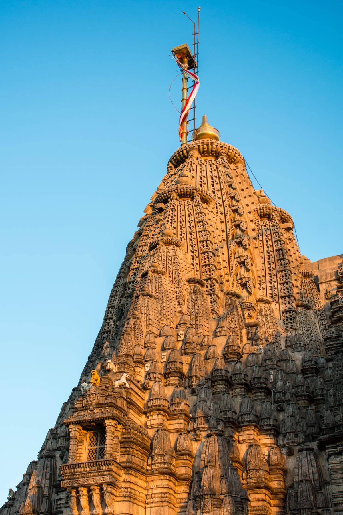 Golden sunrise over one of the thousand plus temples in Palitana, an off the beaten track destination in Gujarat, India.