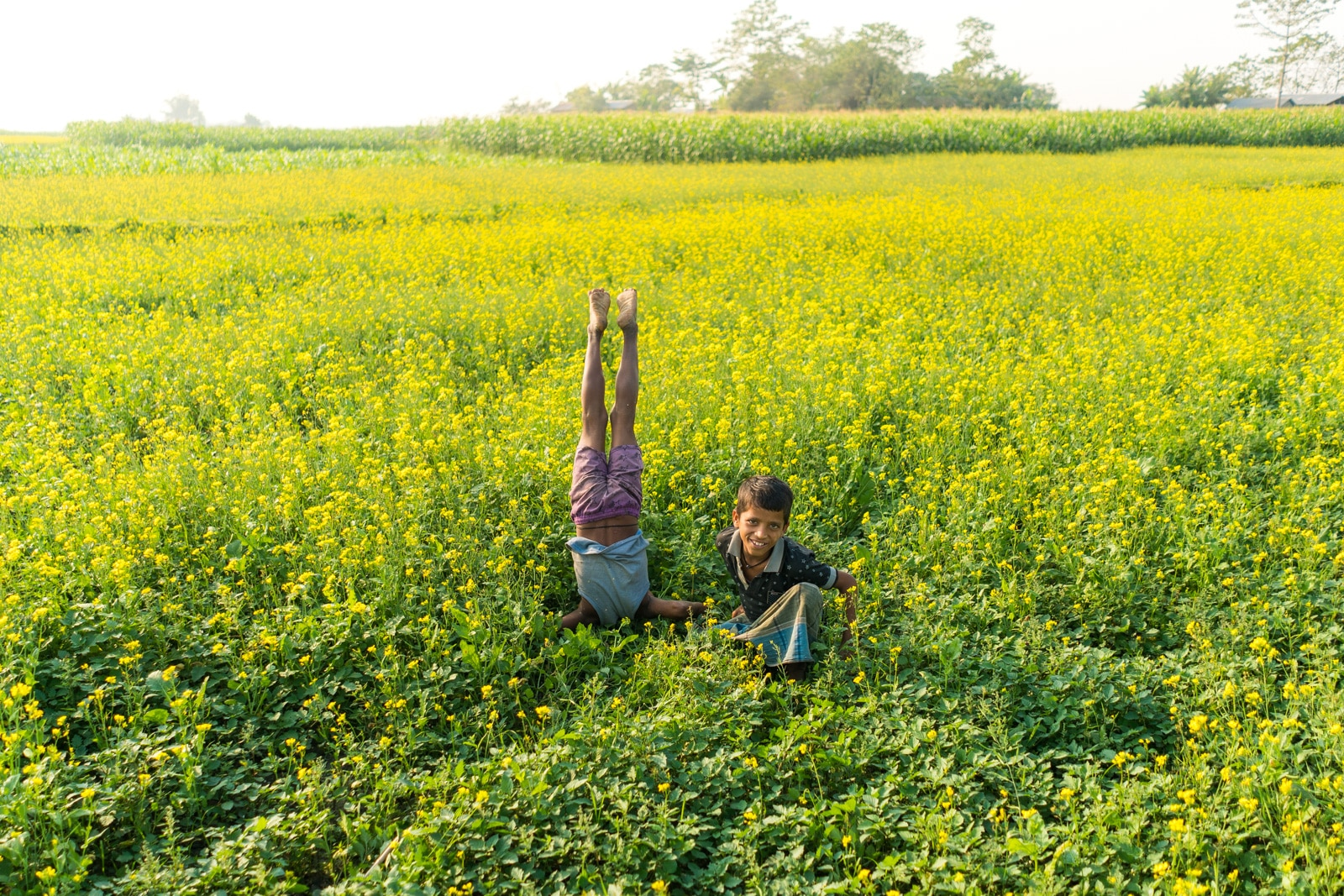 Luxury river cruise in Assam, India with Assam Bengal Navigation - Village kids in a mustard field in the Bangladeshi village of Khirakanta - Lost With Purpose travel blog