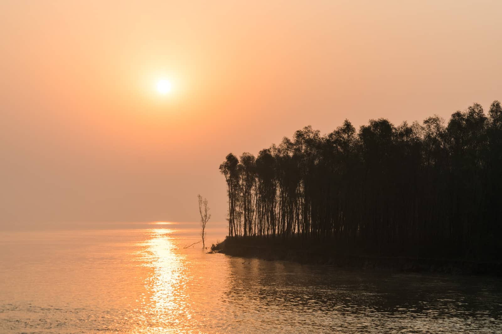 Guide to Nijhum Dwip, Bangladesh - Sunrise over a forested island in the Meghna - Lost With Purpose travel blog