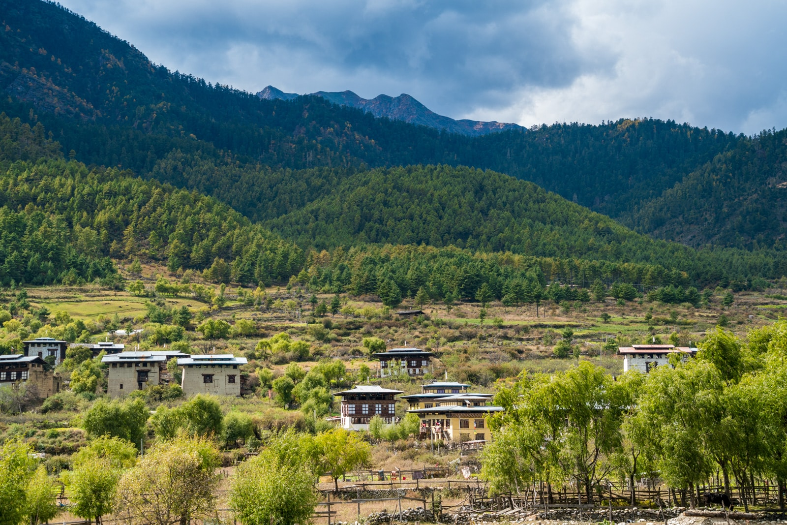 Off the beaten track Bhutan - Haa Valley houses - Lost With Purpose travel blog