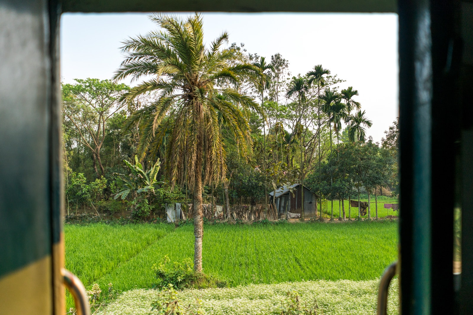 Backpacking in Bangladesh travel guide - Green out of open train door - Lost With Purpose travel blog