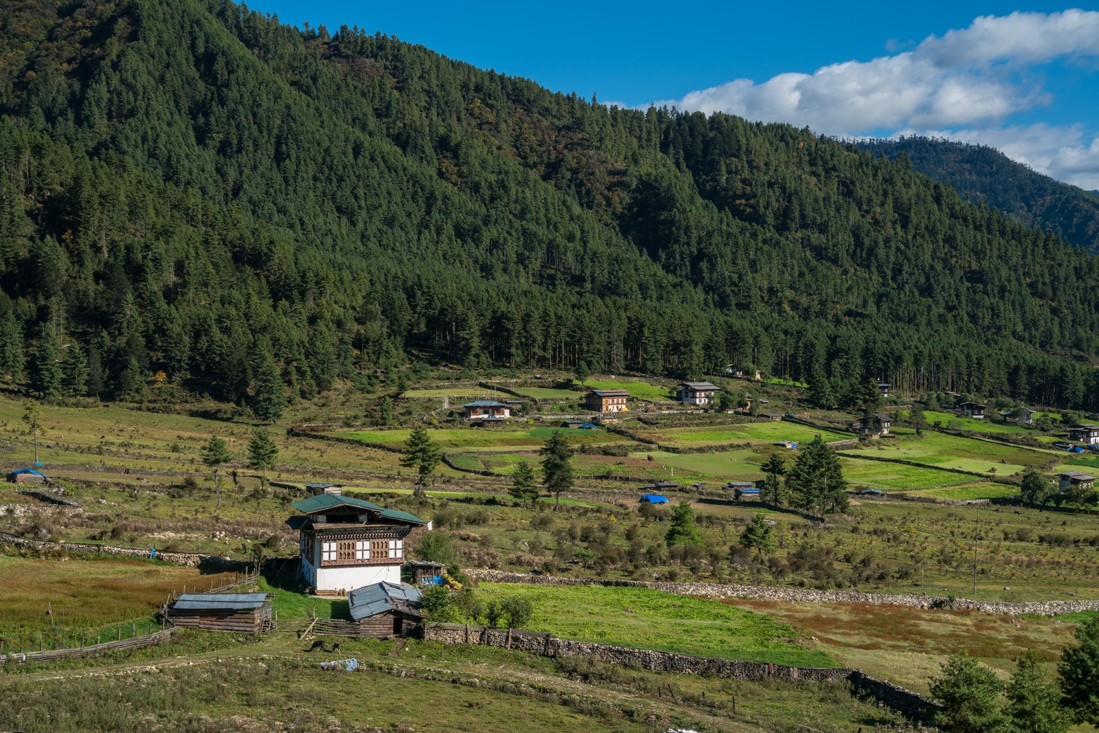 Stunning photos of Bhutan - Village houses in Phobjikha Valley AKA Gangtey - Lost With Purpose travel blog