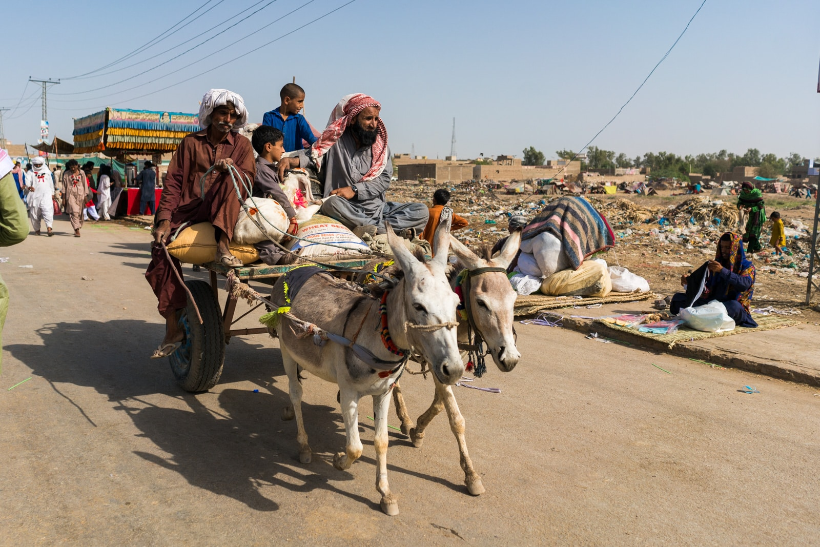 The Urs of Lal Shahbaz Qalandar in Sehwan, Pakistan - Man driving donkey cart - Lost With Purpose travel blog