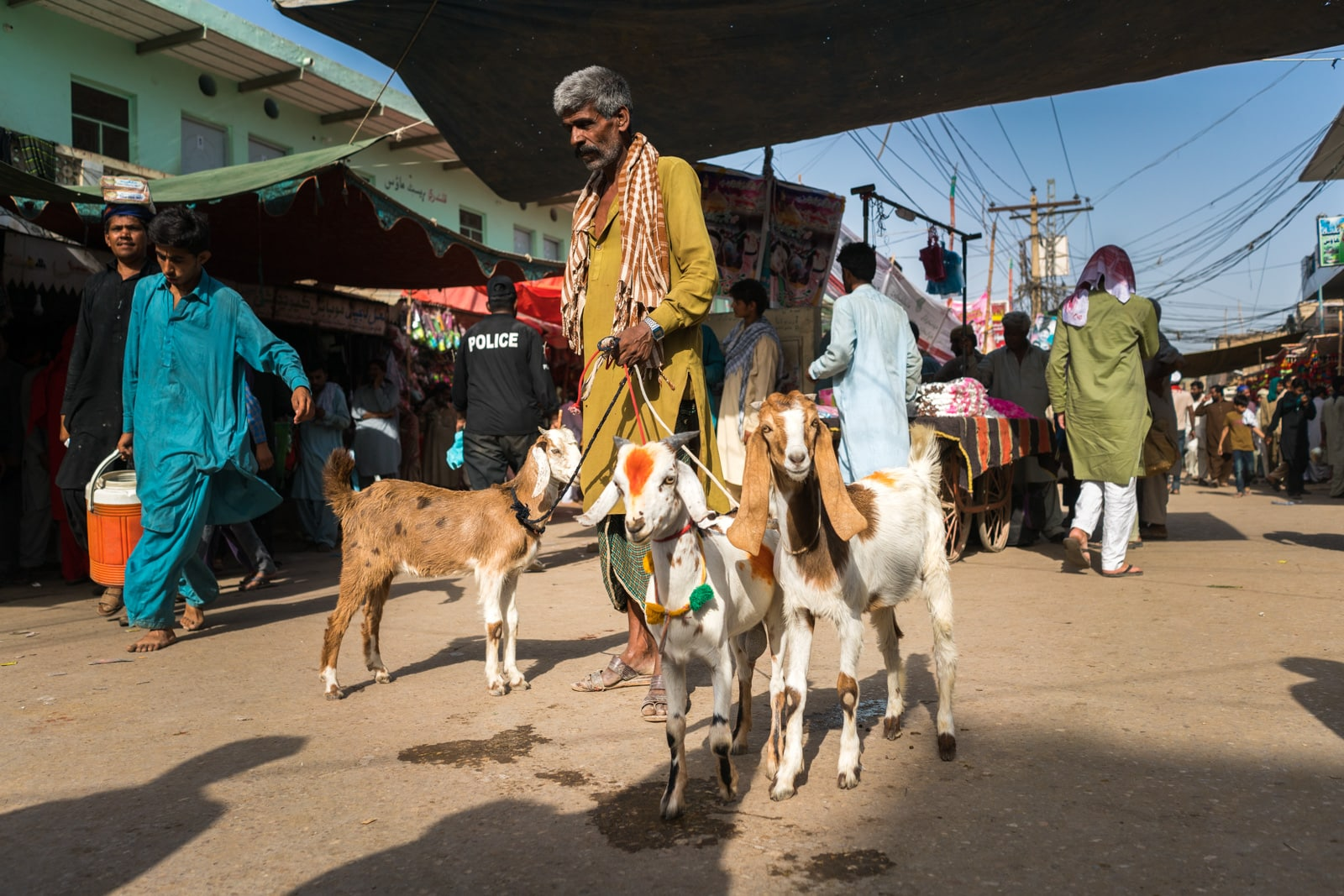 The Urs of Lal Shahbaz Qalandar in Sehwan, Pakistan - Man selling goats on the street - Lost With Purpose travel blog