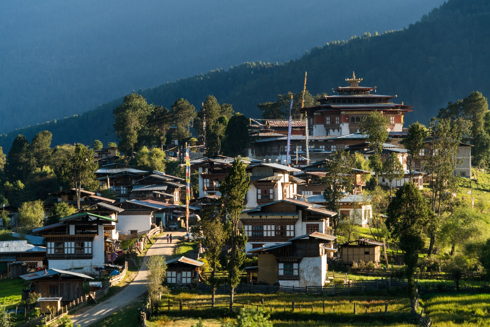 Stunning photos of Bhutan - Gangtey village hilltop at sunset - Lost With Purpose travel blog