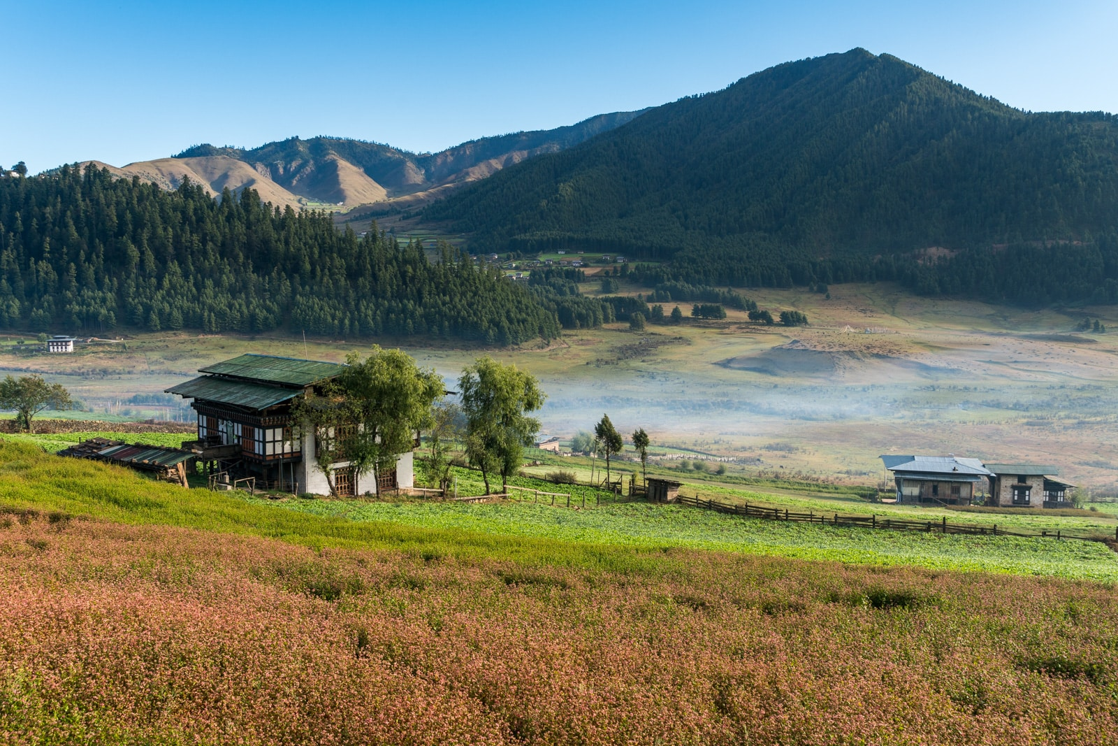 Stunning photos of Bhutan - Farmhouse in Phobjikha Valley - Lost WIth Purpose travel blog