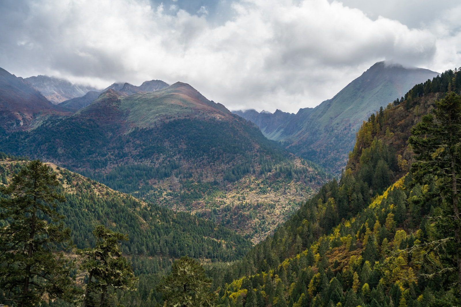 Stunning photos of Bhutan - View on the Gasa to Laya trek - Lost With Purpose travel blog