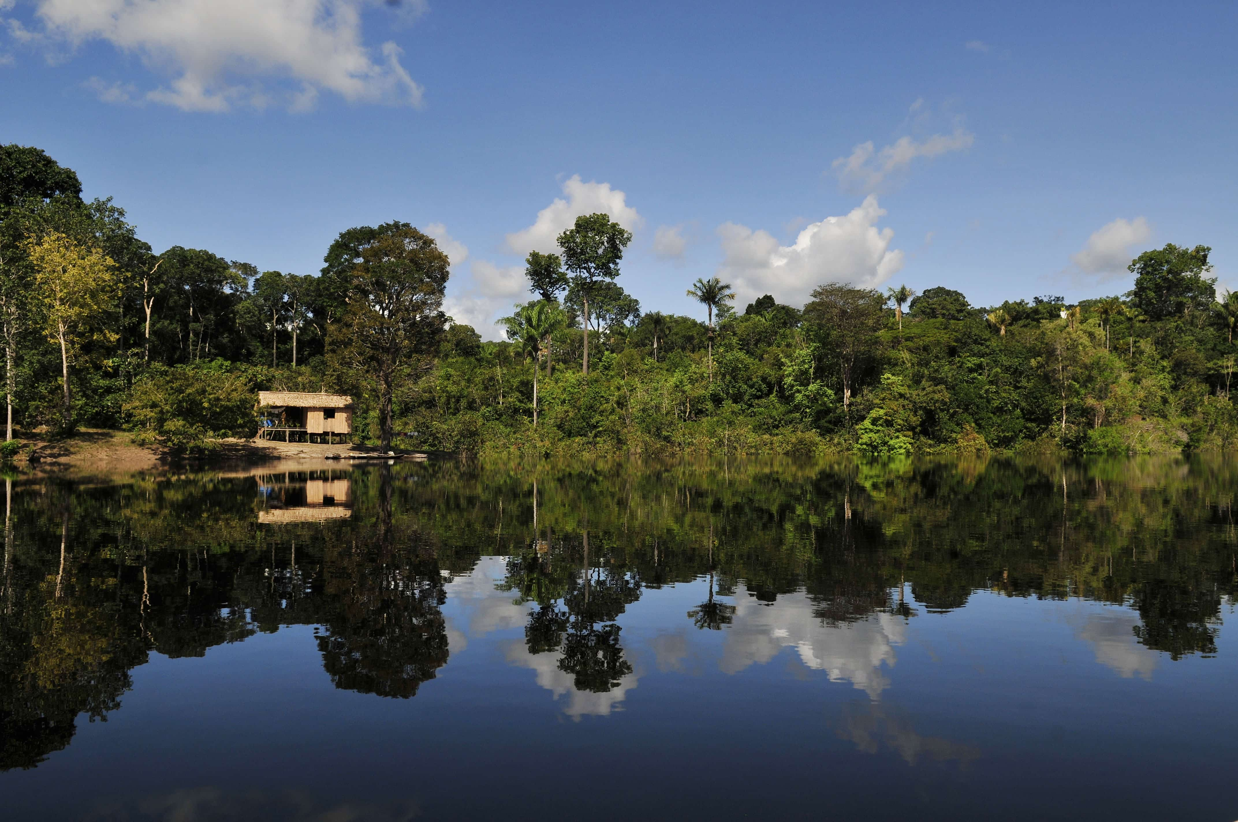 Houses in the Amazon, Brazil, by Neil Palmer of CIAT