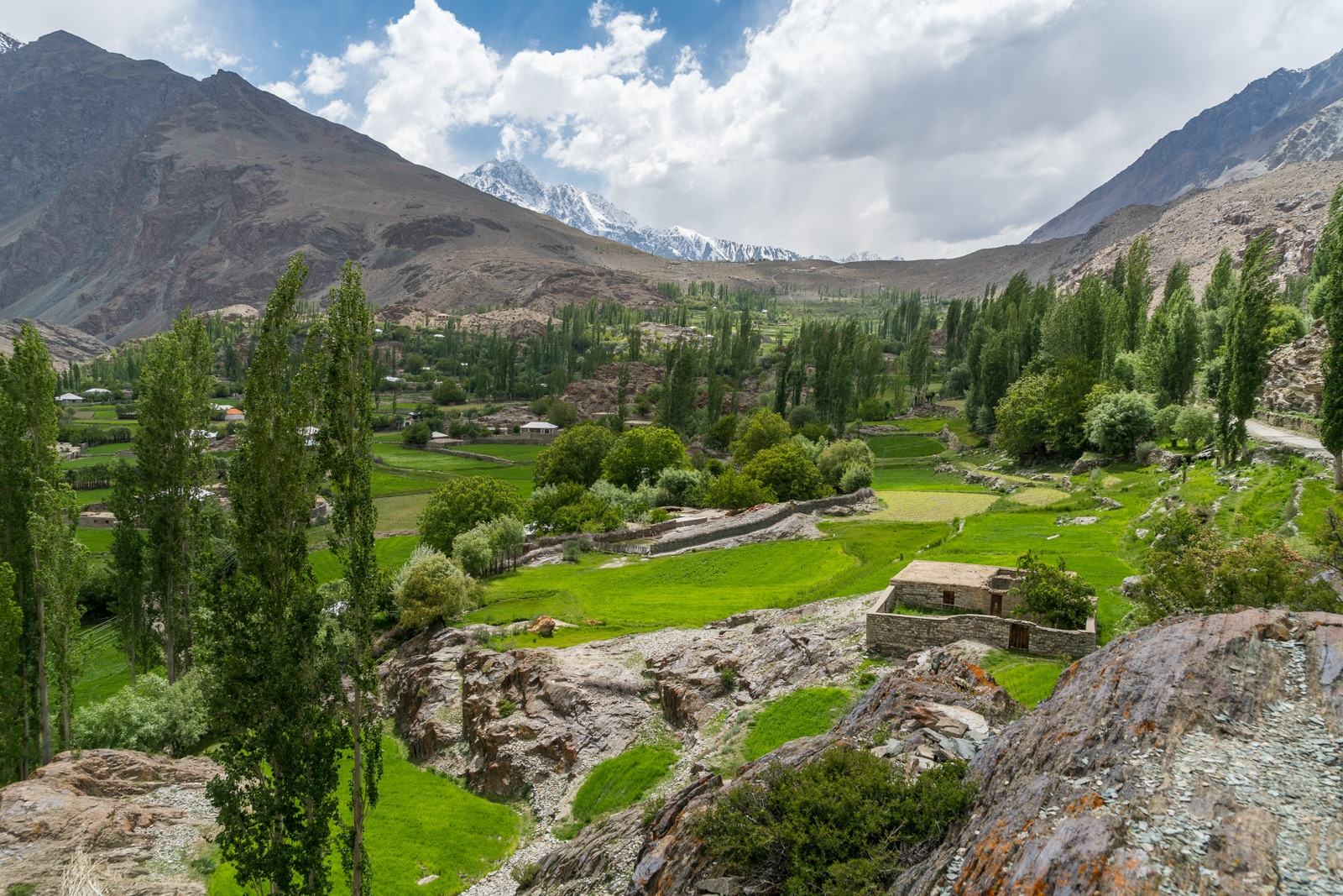 Phander Valley travel guide - Greenery in a remote village near Phander - Lost With Purpose travel blog